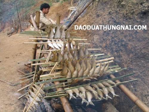 Đặc sản cá nướng Sông Đà ở Thung Nai Hòa Bình - Dac san ca nuong Song Da o Thung Nai Hoa Binh