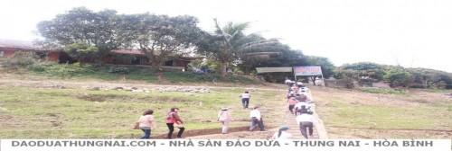 Nhà Sàn Đảo Dừa - Thung Nai Hòa Bình - Nha San Dao Dua - Thung Nai Hoa Binh
